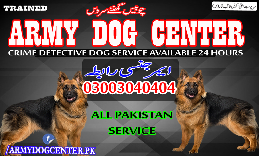 Kasur Dog Center 03003040404 Emergency Call All Pakistan
