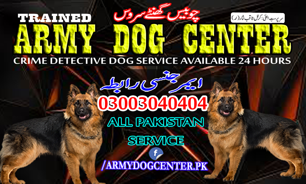 Rahim Yar Khan Dog Center 03003040404 Emergency Call