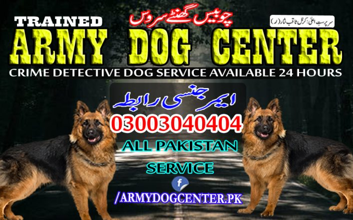 Sargodha Dog Center 03003040404 Emergency Call All Pakistan