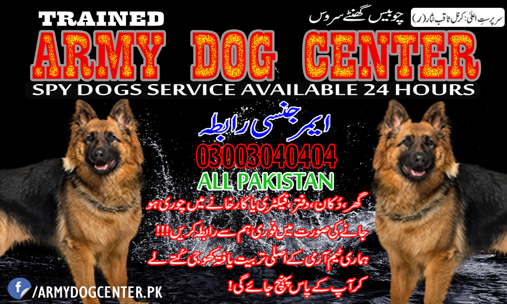 Army Dog Center Pakistan 03003040404 Emergency Contact