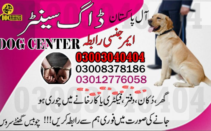 Army Dog Centre 03003040404 Emergency Call All Pakistan